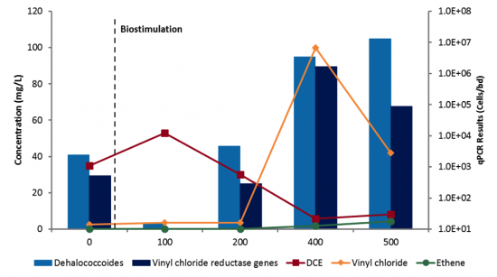 Census Reductive Dechlorination Case Study Microbial